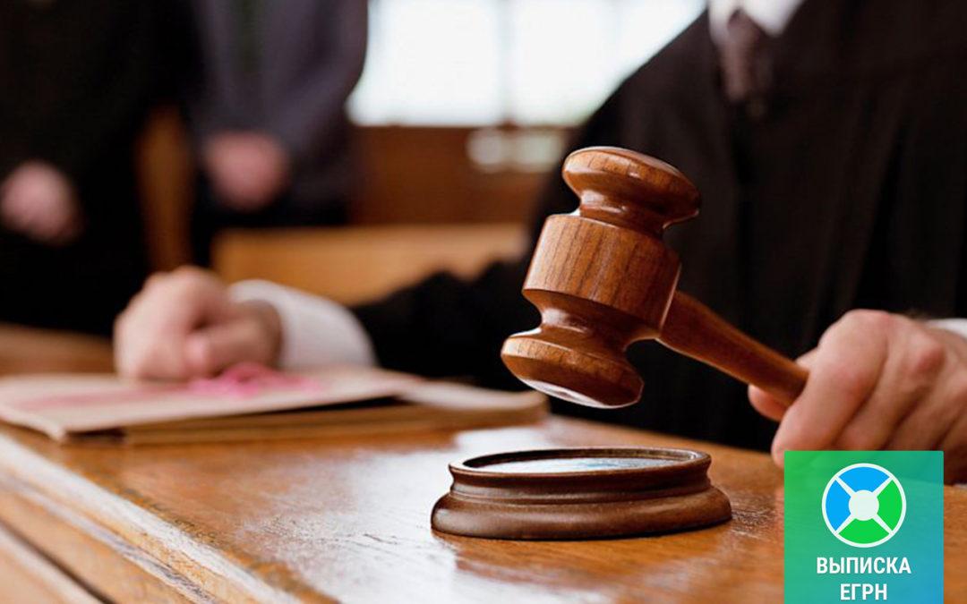 Выписка ЕГРН для суда с печатью